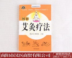 北京艾灸书